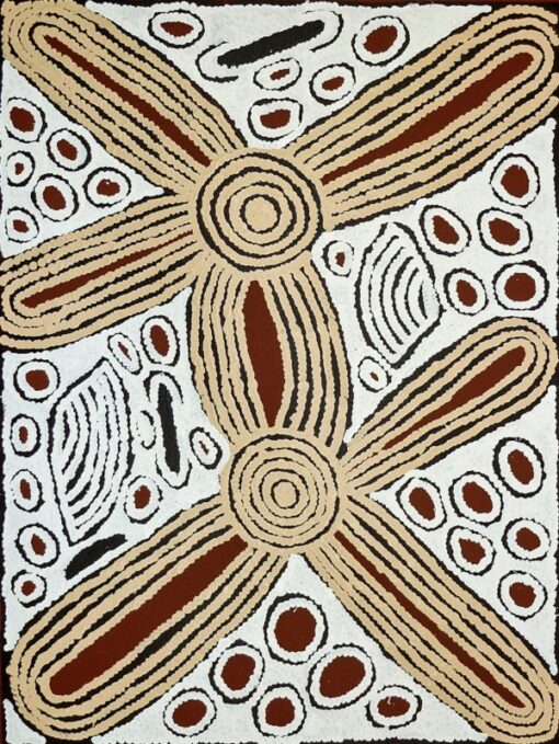 Australian Indigenous Artists NIN1101 90x120cm 2250 P