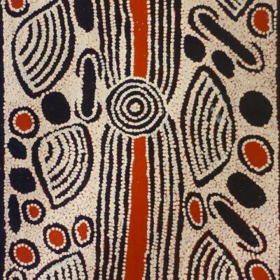 Australian Indigenous Artists NIN900 90X147cm 2875 P